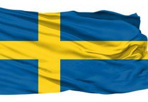 Ruotsin kielen yksityistunteja